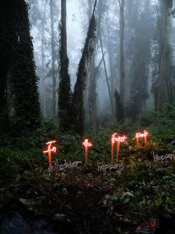 Studio Visit:  Meryl Pataky's Neon & Nature