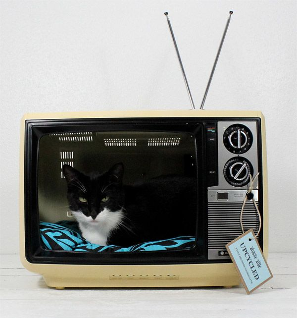 305 Best Images About Cat Accessories On Pinterest Cat