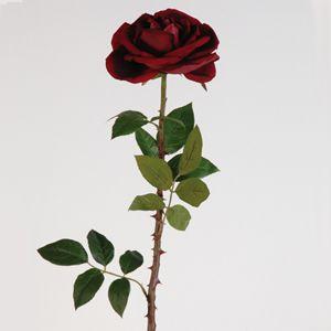 Vel Rose Amore Gnt Thorny Stem Decoration Pinterest