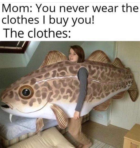 Fish Fish Fish Fish Fish Memes In 2020 Really Funny Memes Really Funny Ironic Memes