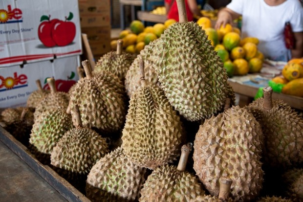 Durians au marché à Manille © Quentin Gaudillière