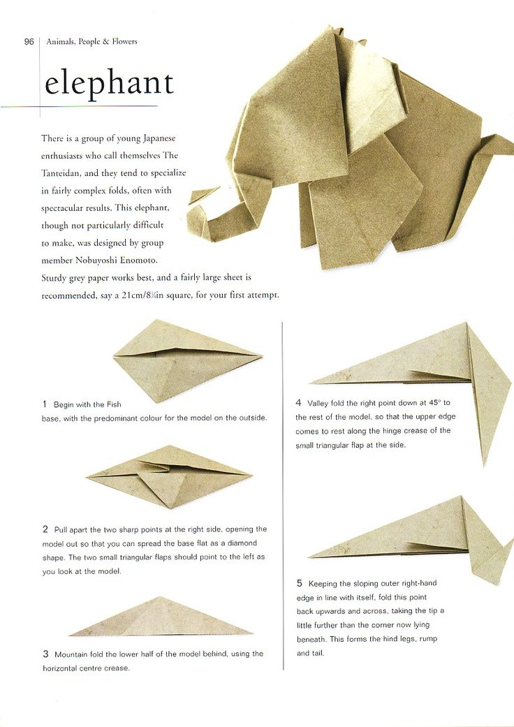 25 best ideas about origami elephant on pinterest