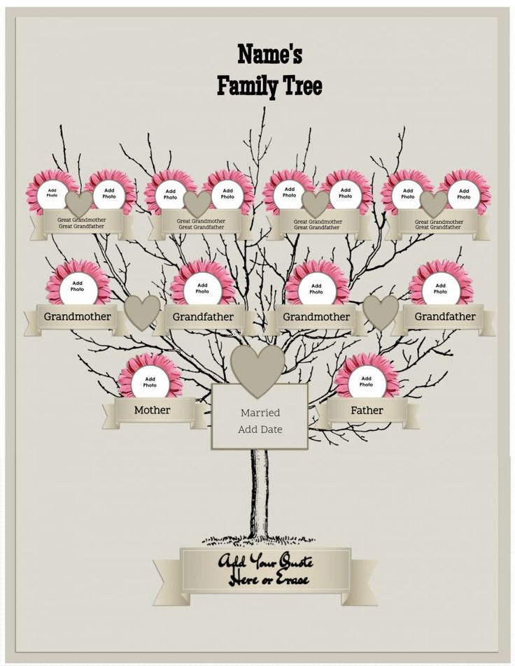 25 best Family Tree Templates images on Pinterest Family tree - family tree chart template