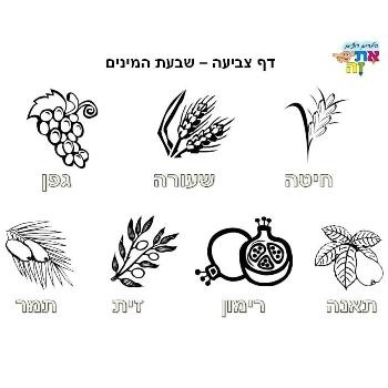 shavuot food ideas