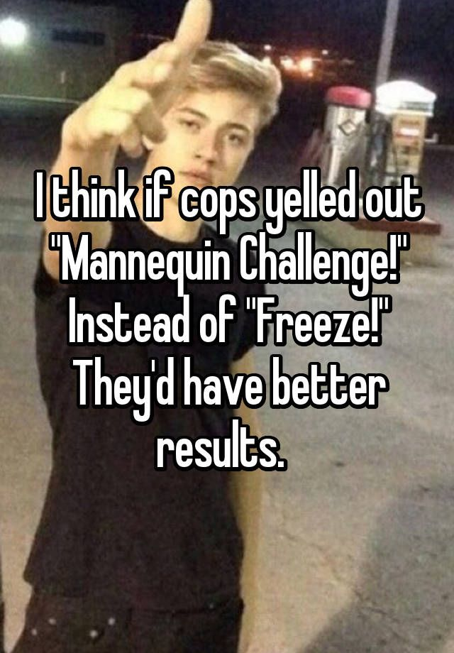 50 Funny Memes; the best of 2016 I think if cops yelled out Mannequin Challenge! Instead of Freeze! Theyd have better results.