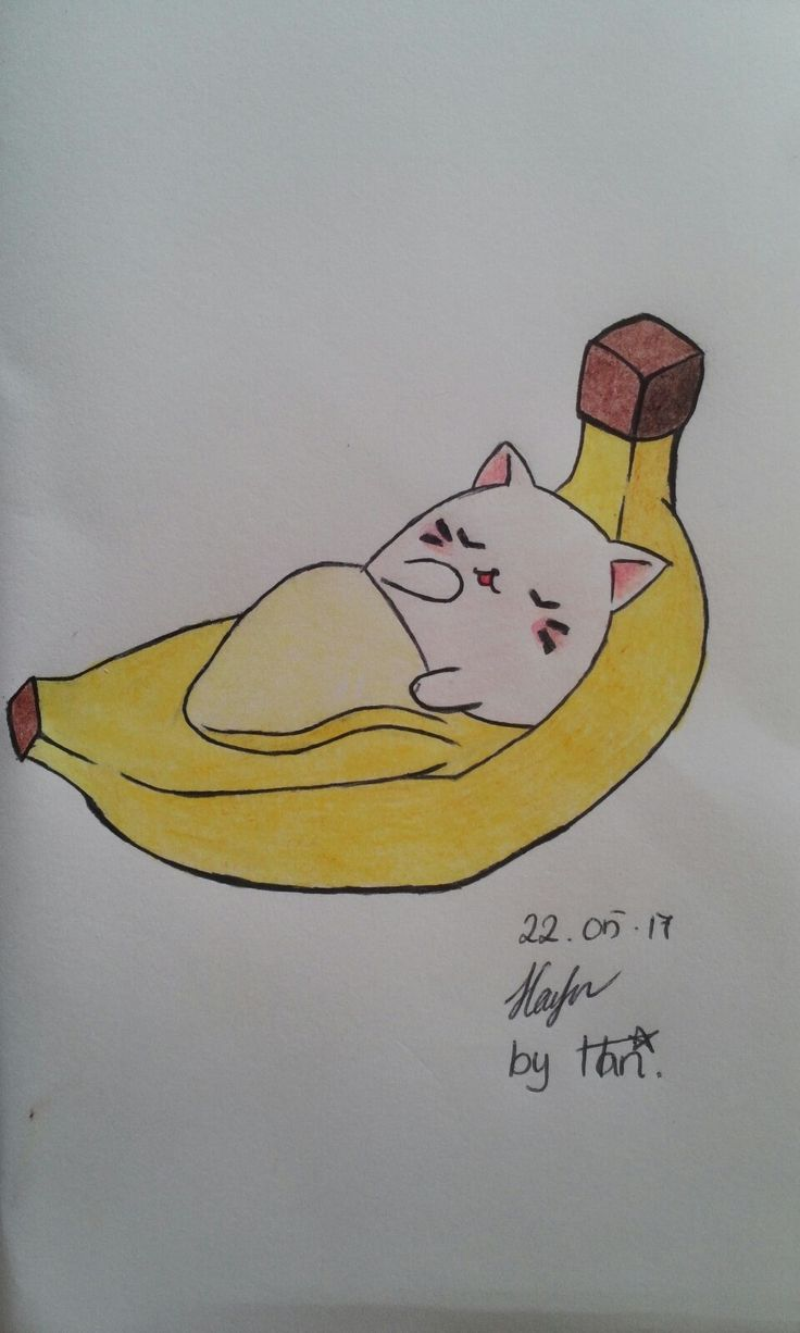A cat in the banana 😂