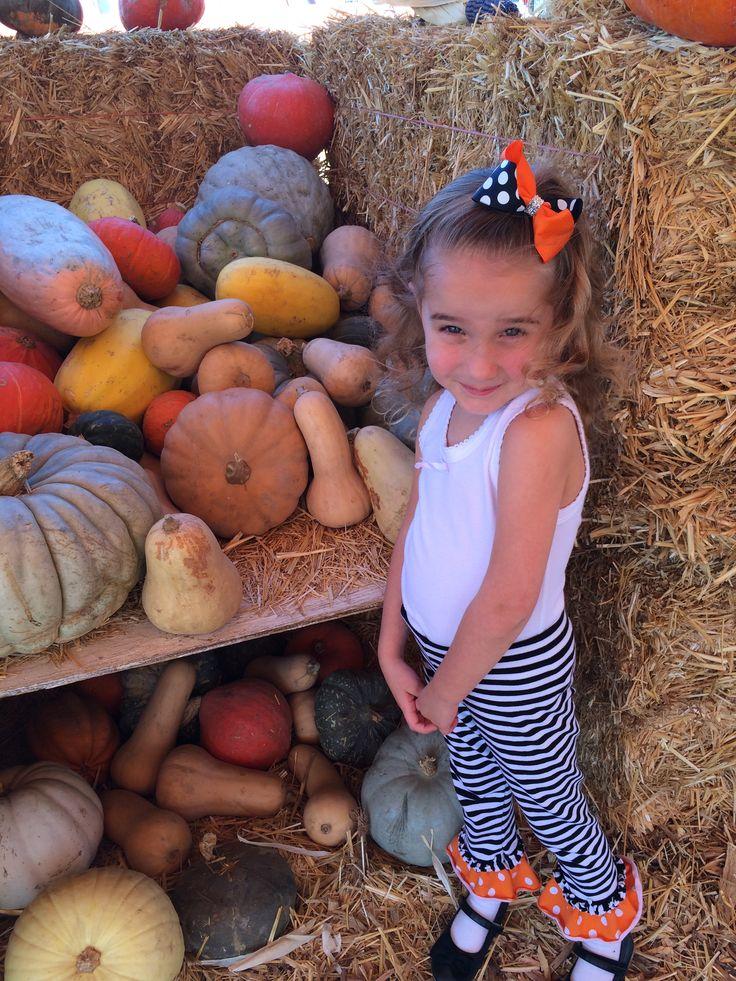 It's Pumpkin Patch Time! | Las Vegas Moms Blog