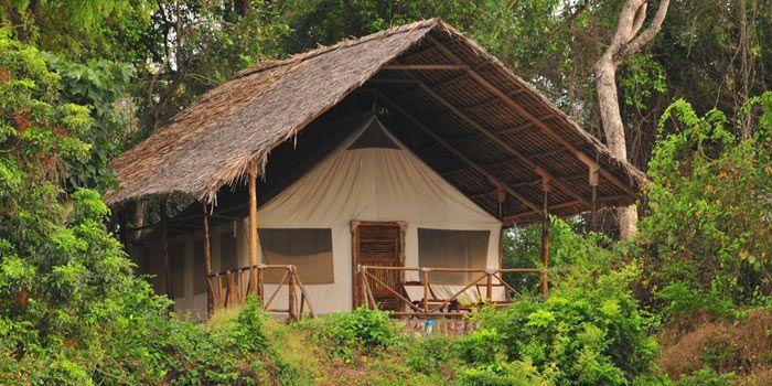 Selous Southern Tanzania