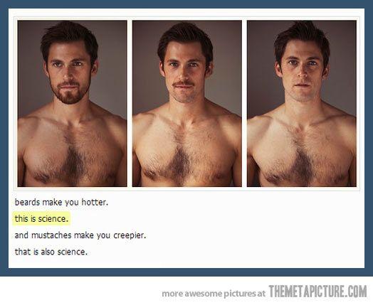 25+ Best Ideas About Mustache Sayings On Pinterest