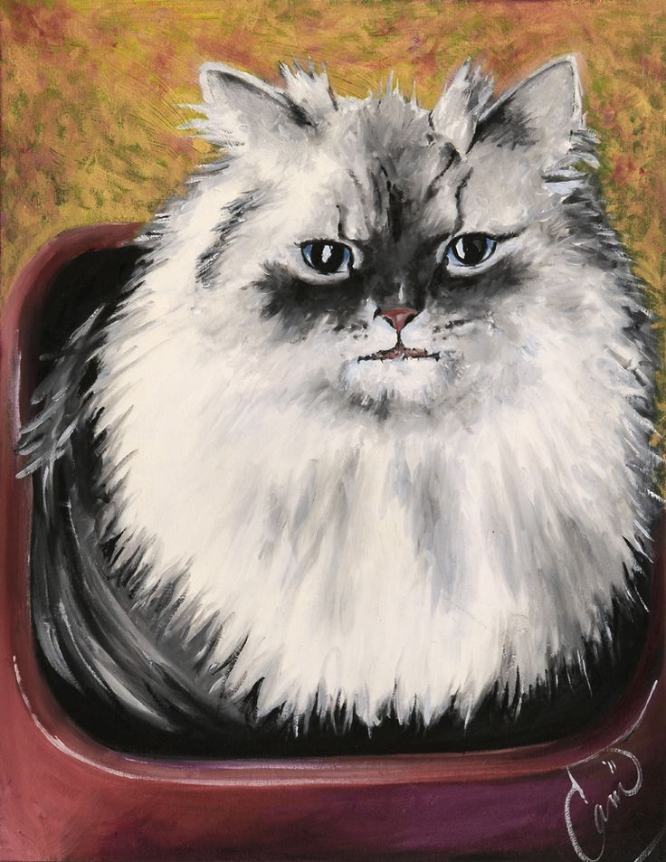 Maine Coon, Tulip, caught in the dog dish. Oil on Panel. Capture amazing moments of your furry friend in oil. Forever in paint = forever in our hearts. Prints are available.