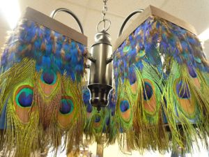 """From the Florida Keys Community College 2011 Student Art Show is this """"breath-taker of the show,"""" Sarah Bringle's peacock feathered chandelier. For inspiration only, alas."""