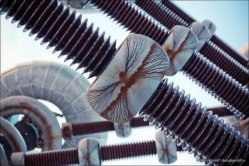 Tesla generator news flashes, progress and scientific tests. http://www.teslageneratorplans.net/ Part of Tesla generators