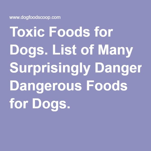 Part I of Toxic Foods for Dogs. List of Many Surprisingly Dangerous Foods for Dogs.