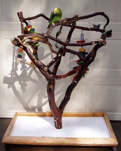 macaw tree stand | Spoiled Bird Toys - Manzanita Parrot Playstands, Parrot Toys,Parrot ...