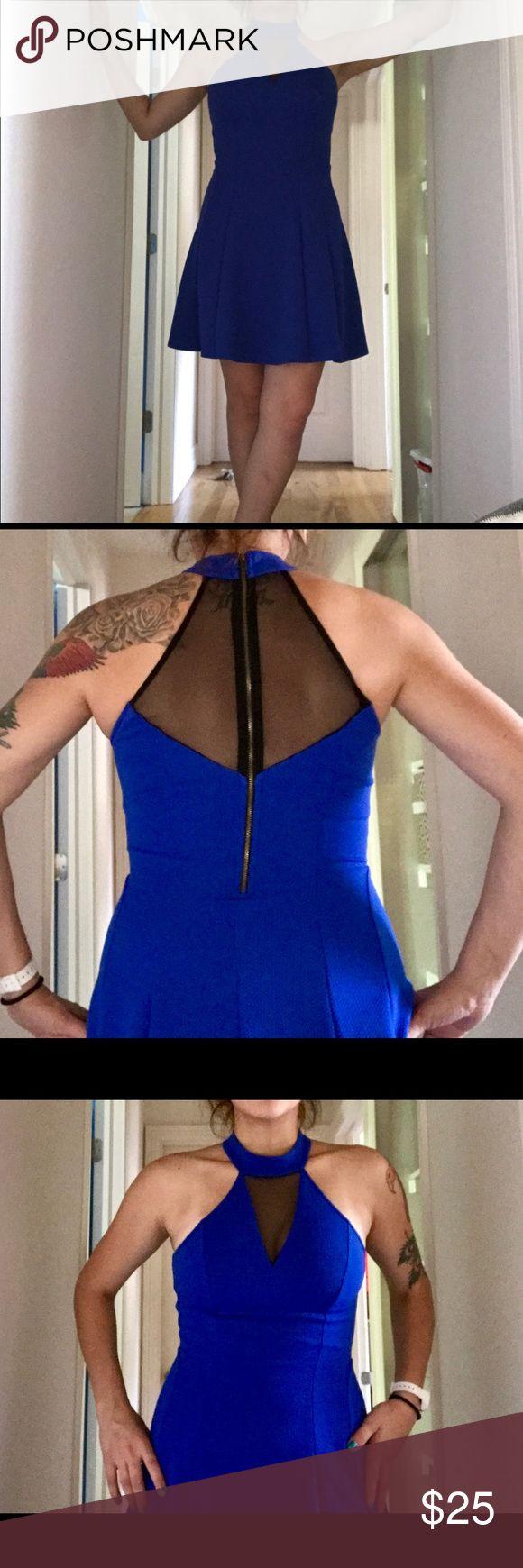 Pantyhose for a royal blue dress