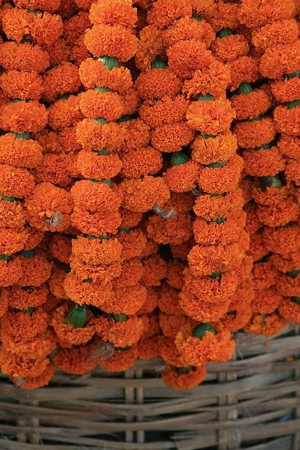 flower offering - marigold garland