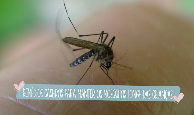 Remédios+e+soluções+caseiras+para+espantar+mosquitos+e+pernilongos
