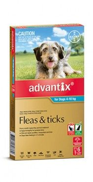 Advantix Dog 4-10kgs Medium 4's & 6's -Advantix kills and repels deadly paralysis ticks. It also kills fleas fast, and kills and repels brown dog ticks and bush ticks. Advantix also repels mosquitoes, sandflies and stable flies that can make your dog's life a misery.