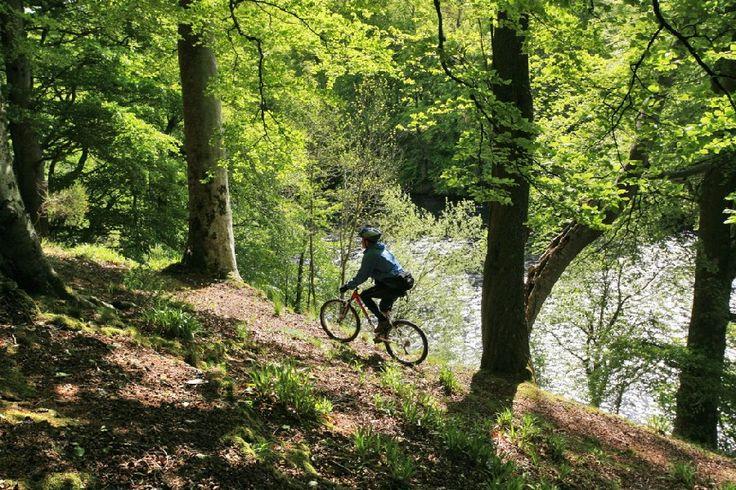 Vélo dans la forêt de Kenmore, Perthshire, Ecosse