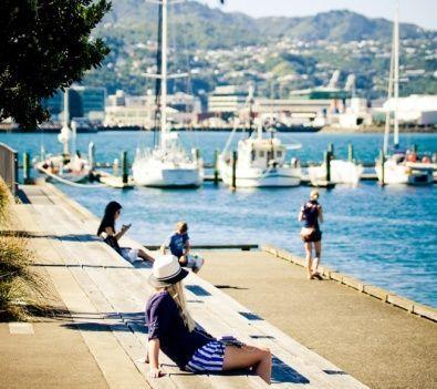 Wellington hidden gems and local secrets