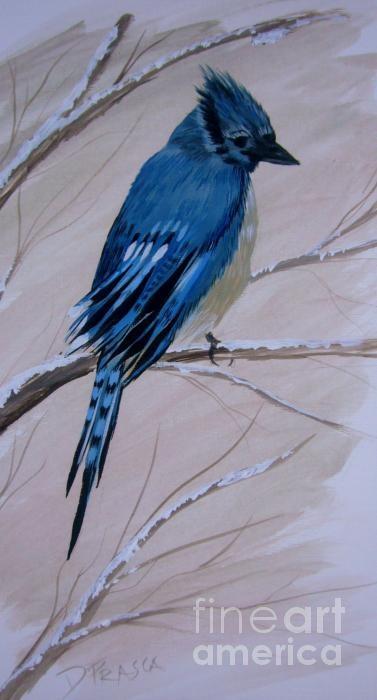My sad Jay // #fineart: Sad Jay, Blue Jays
