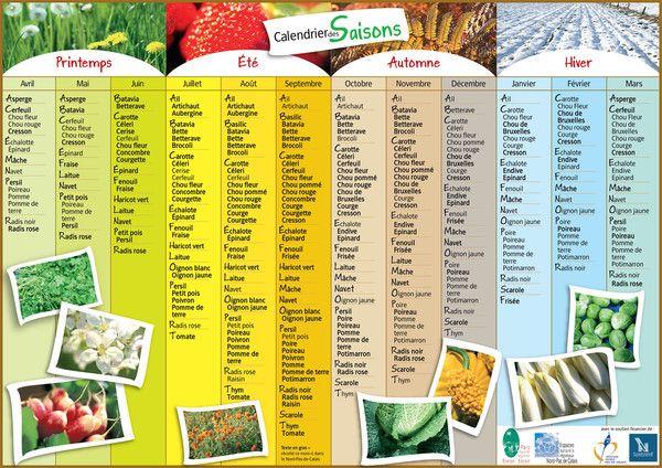 Calendrier des saisons: quels fruits/ légumes manger?