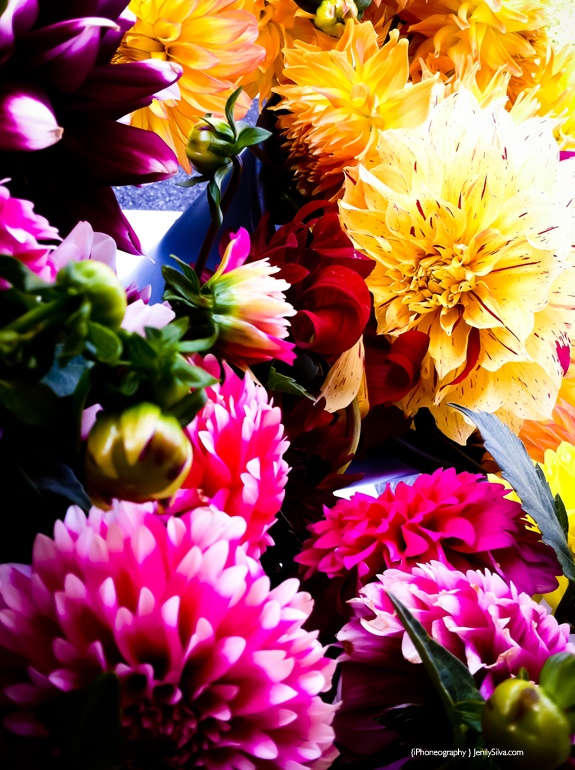 #Dahlias #FarmersMarket #Flowers