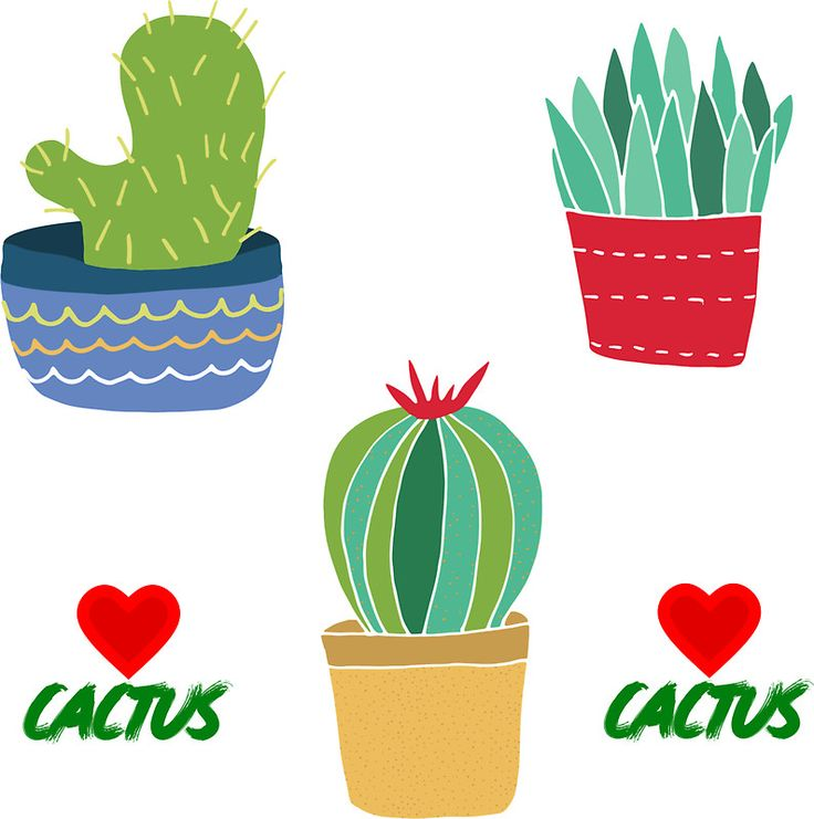 Buy love cactus sticker set by larkdesigns as a sticker three cool cactus in pot stickers plus two love cactus heart stickers make up this set