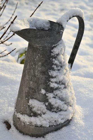water pitcher in snow