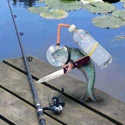 Donde Pescar :: Humor en la pesca, videos, fotos, historias, caricaturas