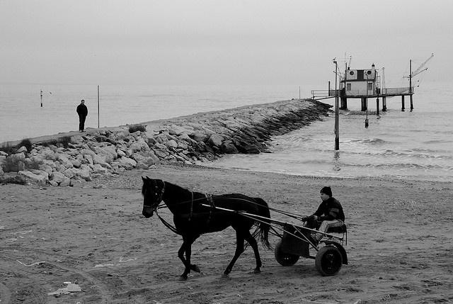 Boca barranca, Marina Romea by lyonora, via Flickr
