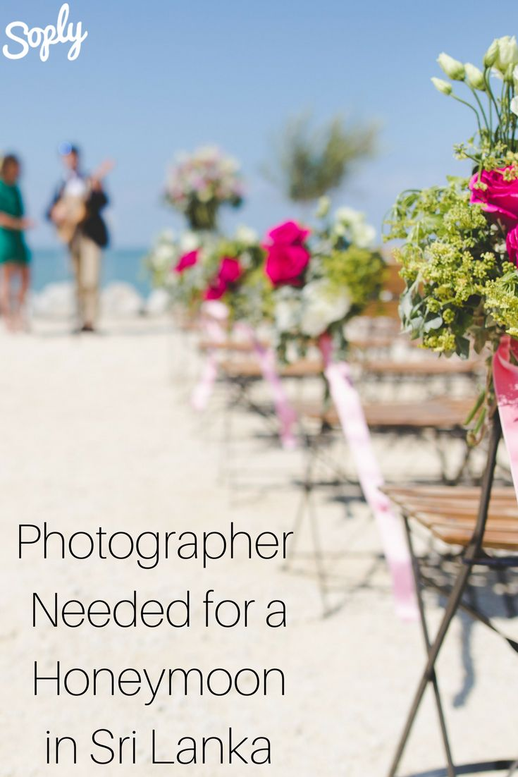 Photographer needed for a honeymoon in Sri Lanka anytime between March 17-24. See the photography job and apply by clicking the pin!