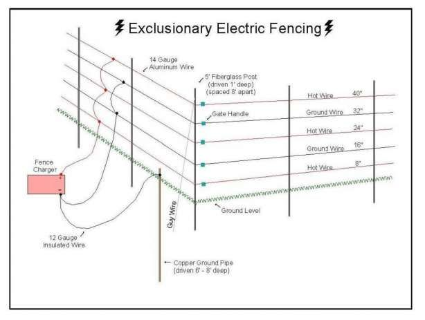 17 Domestic Electric Fence Wiring Diagram Wiring Diagram Wiringg Net In 2020 Electric Fence Electricity Fence