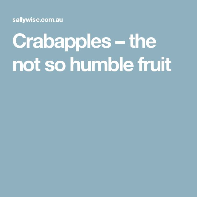 Crabapples – the not so humble fruit