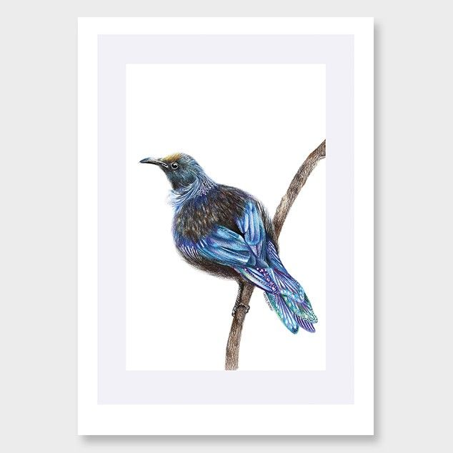Psychedelic Tui Art Print by Olivia Bezett NZ Art Prints, Design Prints, Posters & NZ Design Gifts | endemicworld