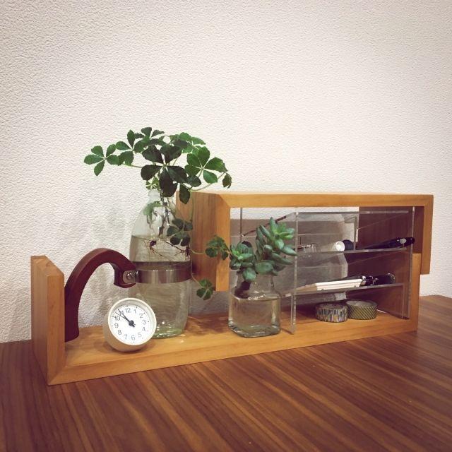 hiro.rororoさんの、多肉植物,植物,ZERO-CUBE,ゼロキューブ,zero_cube,木製,グリーンのある暮らし,無印良品,文房具収納,シュガーバイン,ニトリ,アクリルケース,My Desk,のお部屋写真