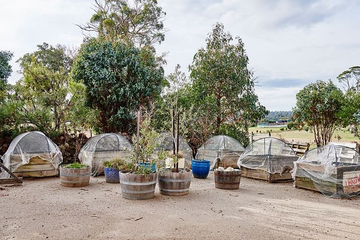 Recently sold 5 bedroomhouse at 61 Peddie Drive, Dilston TAS 7252. View sold property prices & listing details on Domain.com.au. 2013838225