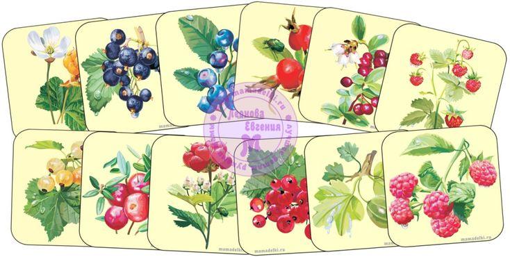Пазлы ягоды - скачать бесплатно. FREE - Preschool Printables.