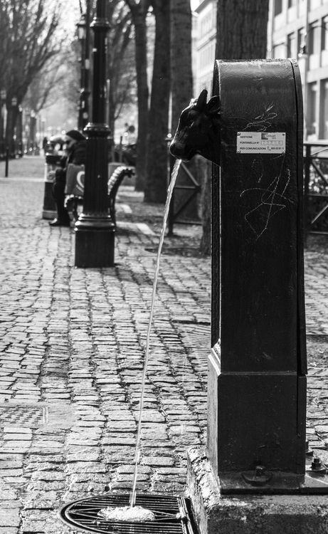 Toret - Torino