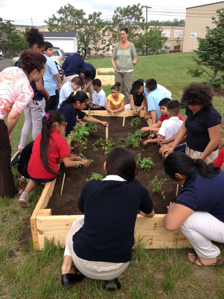 "Fifth-graders from Southwest Community Campus, in the Grand Rapids school district, planted a ""pizza garden"" in raised beds at Grand Rapids Community College's Tassell M-TEC facility."