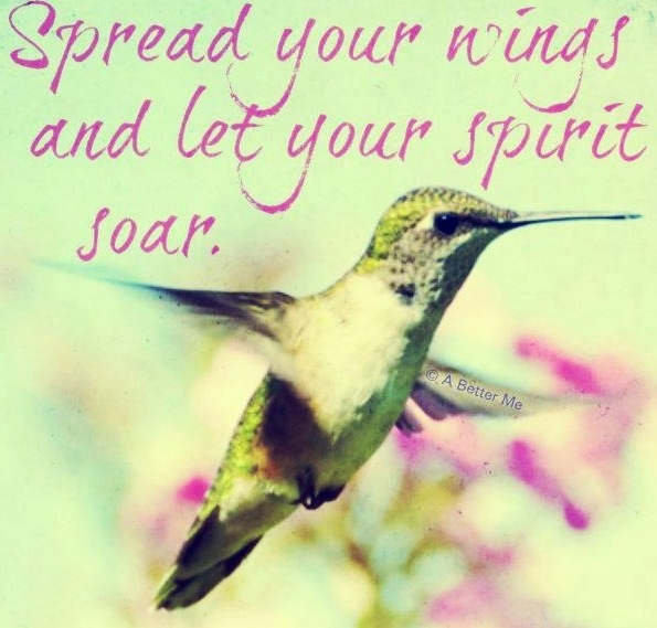 Hummingbird quote via A Better Me on Facebook