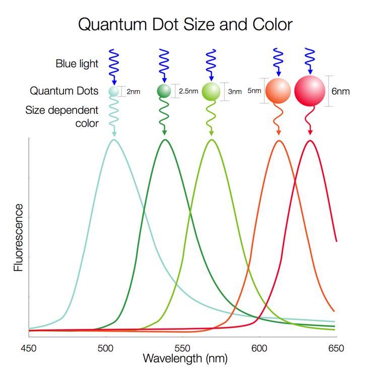 AMOLED v/s Quantum dot v/s IPS LCD