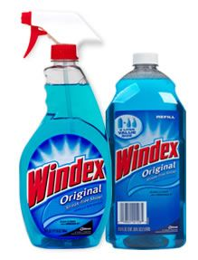 Michael Finney's Consumer Blog: Kill those pesky ants with Windex