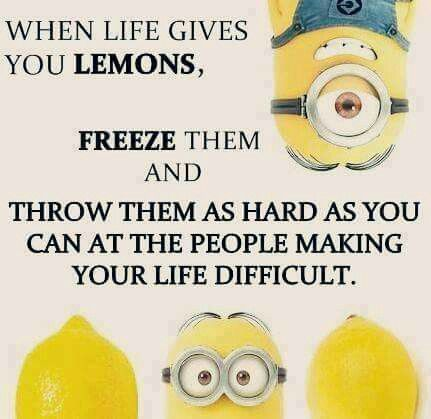 "This is the better answer to ""When life gives you lemons"". Probable more likely to get you arrested, but who cares. #Minions"