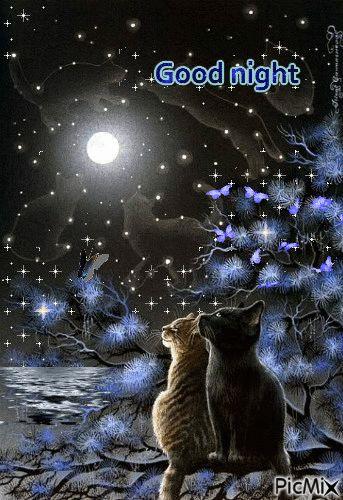picmix.com autum nights gifs | good night - PicMix ...
