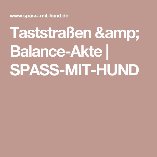 Taststraßen & Balance-Akte   SPASS-MIT-HUND
