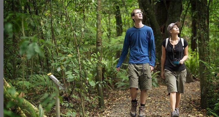Maungatautari Sanctuary Mountain, Ecological Island