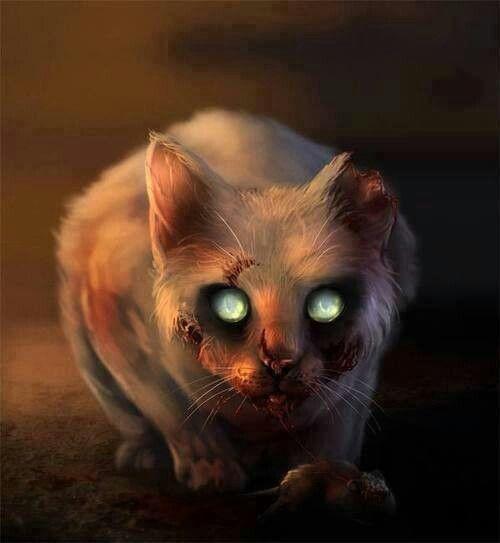 creepy zombie cat