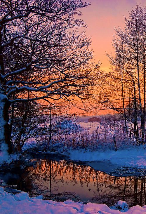 ***Winter sunrise [photographer and location unknown]