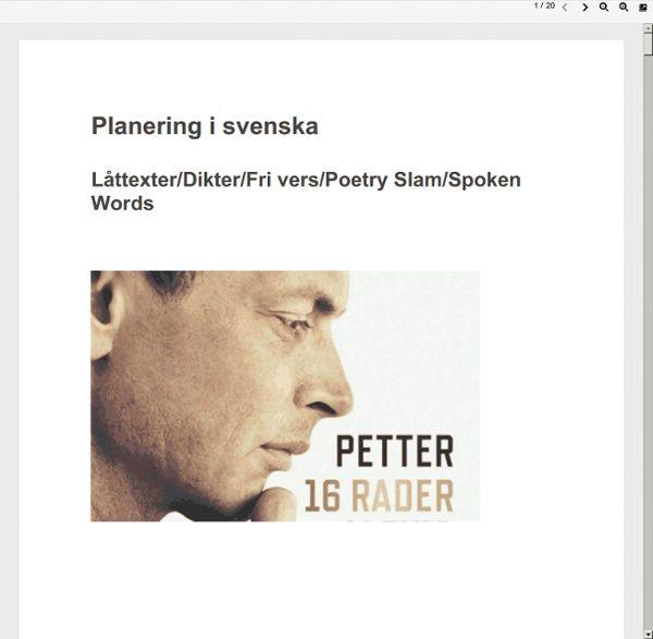 Planering 16 rader spoken words.doc